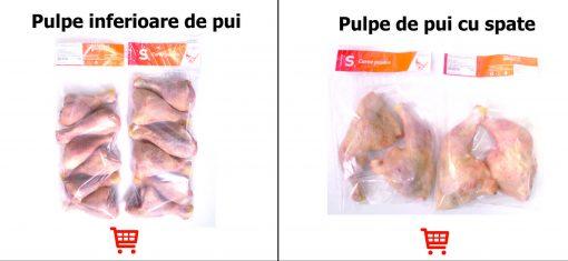 poze_carusel_pui